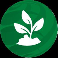 Environment & Reforestation
